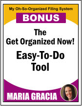 The Get Organized Now! Easy-To-Do Tool MARIA GRACIA My Oh-So-Organized Filing System BONUS