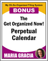 The Get Organized Now! Perpetual   Calendar MARIA GRACIA My Oh-So-Organized Filing System BONUS